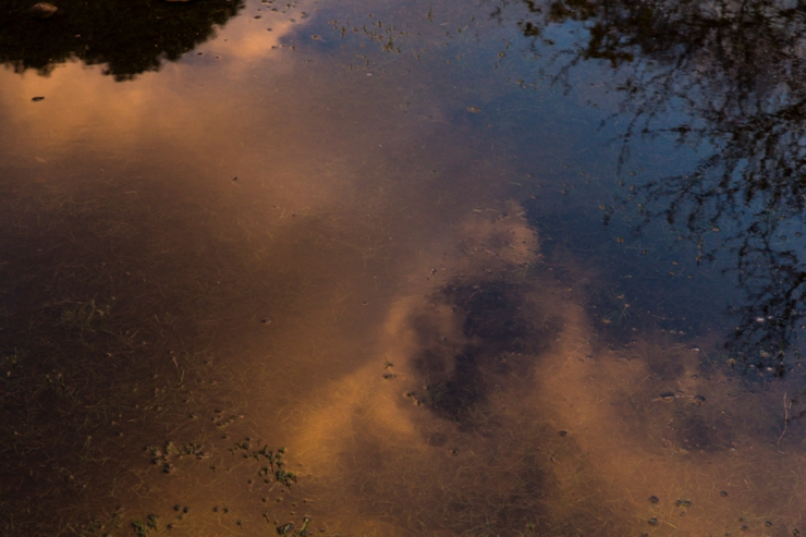 puddles-2
