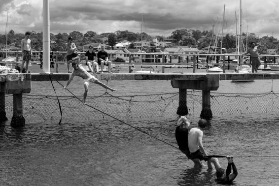 trapezeiast (1 of 1)